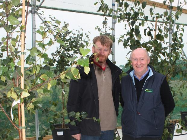 John Kavanagh (left), nursery manager with None-So-Hardy, and Oliver Sheridan, forestry researcher with Teagasc, in the newly-built birch seed orchard. Photo: Teagasc