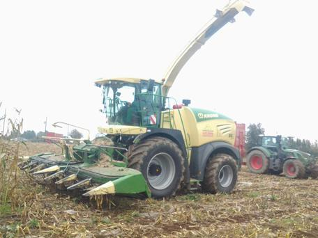 The Big X 530 powers through eight rows of maize at a leisurely 6km/h