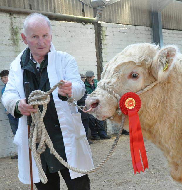 Michael McGirl, Carrick-on-Shannon with the winner of the class born September 1-September 12, 2015.