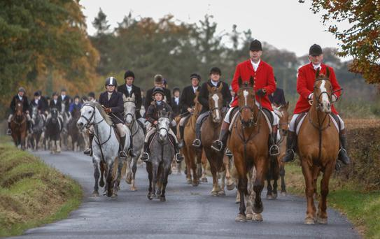 David Lalor (far right) serves as joint-master of the Laois Hunt and is the new chairman of the Irish Masters of Foxhounds Association