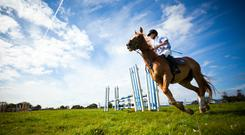 It is important to have insurance in place when taking part in horse riding activities