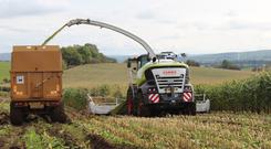 The Jaguar 980 and 970 self-propelled harvester models from Claas have been enhanced for 2017
