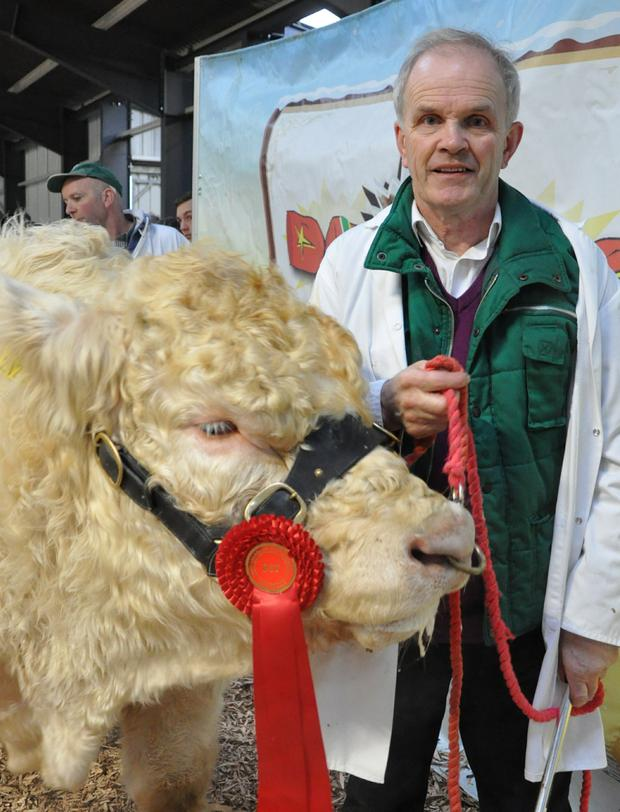 Pat McClean, Lifford, Co Donegal with Roughan Logan 2, Reserve Male Senior Champion.