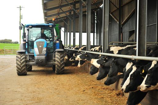 Drying off cows will yield rewards throughout the year