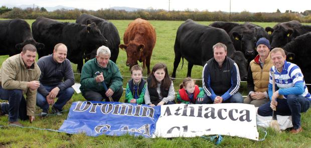 Cian Mc Auliffe, Michael Carmody, Willie Nunab, Liam Kelleher, Maeve Kelleher, Aine Kelleher, Ian Kelleher, Edward O'Regan, and Colm Breen with some of the stores they raised to support their local GAA club, Dromin-Athlacca, in Co Limerick. Thirty farmers have raised calves as part of the fundraiser which is expected to generate €16,000 for the club