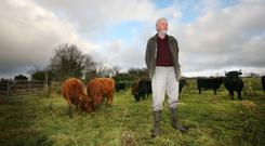 Oliver Davey on his farm near Tubbercurry where he breeds and rears organic Dexter cattle. Photo: Brian Farrell
