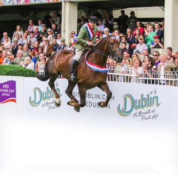 Brian Murphy and Fort Knox on their lap of honour after winning the hunter championship at the Dublin Horse Show in July