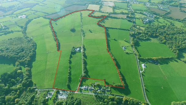 The 84 ac farm is located at Dromore, close to Mallow