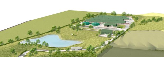 Artist's impression of the new pig farm at Newtownabbey (courtesy McGurran Associates Ltd, Belfast)