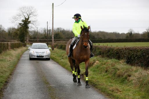 The majority of traffic accidents involving horses happen on minor roads and in rural areas