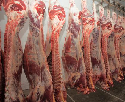 Beef grading machines produce a digital image of each carcass that passed through the machine, which set the grade achieved and, consequently, the price paid to the farmer.
