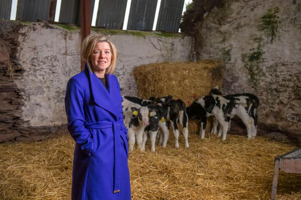 Professor Thia Hennessy of Chair of Agri-Food Economics at Cork University Business School and Head of the Department of Food Business and Development UCC. Pic Michael Mac Sweeney/Provision
