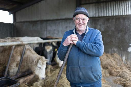 Thomas Shannon on the family farm in Lissycasey, Co Clare. Photo: Eamon Ward