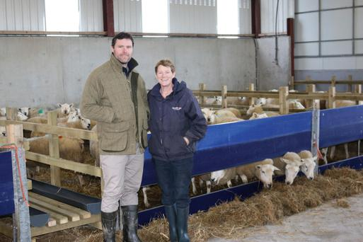 Clifford Richardson with his mother Gladys on the family farm at Carrigallen on the Leitrim-Cavan border. Ewes are due to start lambing this week and 98pc of the flock have been scanned in-lamb.
