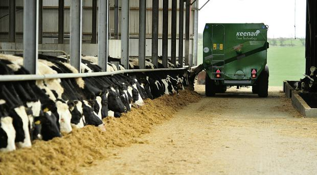 Almost €80k overpaid to Northern Ireland farmer won't be recouped - Department