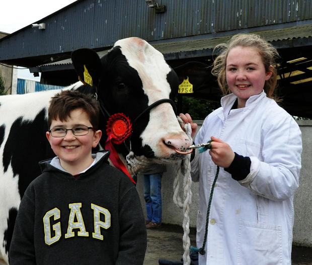Bill and Jane Hannan, Crecora, Co Limerick with class winner, Lisnalty Flame 4, exhibited by their dad, Paul Hannan