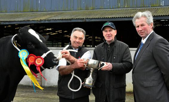 Mervyn Eager, Newcastle, Co Dublin receiving the Championship of the Show at the IHFA Premier Show and Sale at Nenagh from Charles Gallagher, CEO, IHFA with Garry Hurley, Arklow, judge;