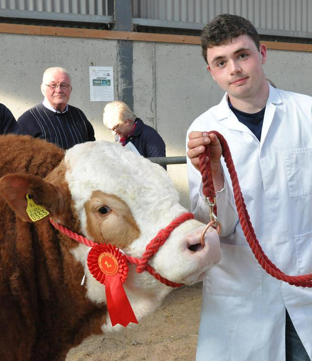 Jack Saunders, Culohill, Portlaoise with the winner of the class for bulls born between February 1, 2016 and March 21, 2016