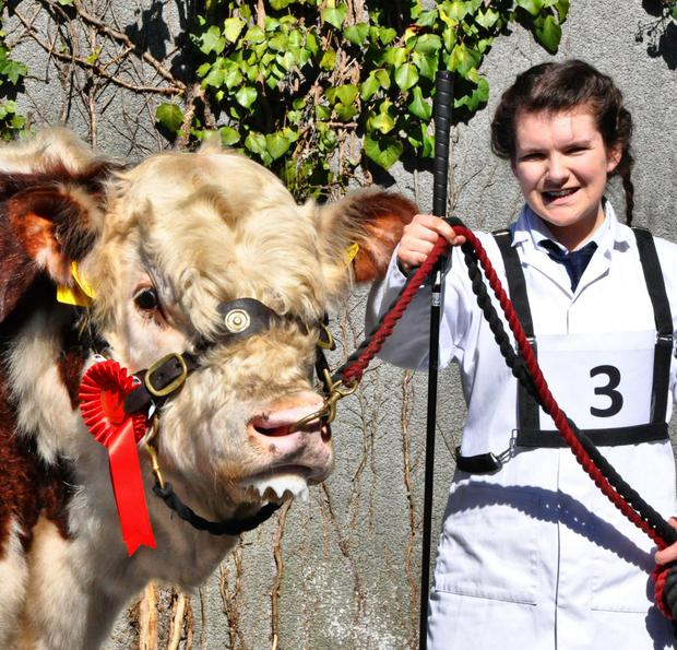 Catherine Smyth, Ardmulchan, Navan, Co Meath with Ardmulchan Lunar winner of the class for bulls born on or between April 16, 2015 and July 15, 2015.