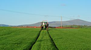 Fungicides will not win the battle on its own