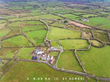 This 21ac non-residential farm at Lisnagry on the outskirts of Limerick city is for sale with a guide price of €160,000