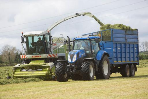 There are steps you can take to cut silage costs