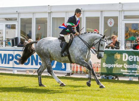 Jane Bradbury on board the supreme hunter champion Bloomfield Bespoke
