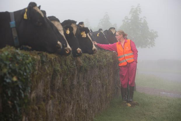 Paula checking on the cows. Photo: Claire Keogh