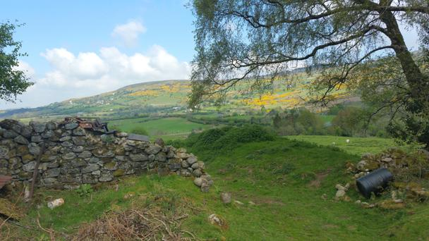 Tround at Glenasmole in the Dublin Mountains is located about 10 minutes from Firhouse and the M50