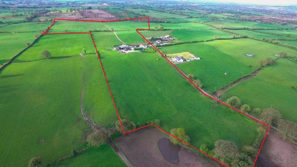 The 55ac dairy farm located near Delvin is guided at €600,000