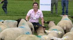 Teagasc's Fiona McGovern said they hoped the trial of ewes and rams brought over in 2014 and 2015 from New Zealand would yield benefits for all sheep farmers in the future.