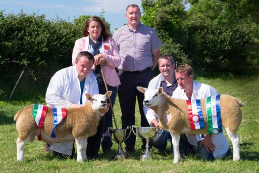 Texel Growvite National Supreme Champion and Male Champion with John Neville, Co Wexford (left), exhibitor of the Supreme Champion; Anthony Donnelly, Co Mayo, exhibitor of the Reserve Supreme Champion and Female Champion; judge Anna Minnice-Hughes; sponsor Mark O'Rourke (Univet) and Patrick Joyce. Photos: Columba O'Hare