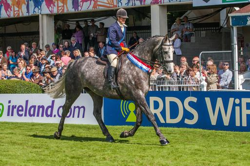 Jane Bradbury on her winning lap of honour aboard Bloomfield Excelsior after winning the supreme hunter title at the RDS in 2014