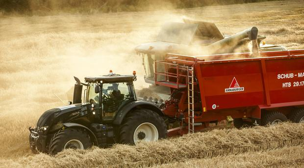 Why this tillage farmer forward selling looks a risky option