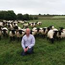 Eamonn Duffy with some of the pedigree Suffolk flock on the family farm at Ethelstown, Co Meath