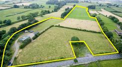 A view of the 18ac parcel of land for sale at Ardobireen near Golden in Co Tipperary