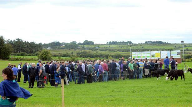 Hundreds of farmers attended the Teagasc Green Acres Calf to Beef Programme open day on Christy Dowd's farm in Ballinagare, Co Roscommon. Photo: Gerard O'Loughlin