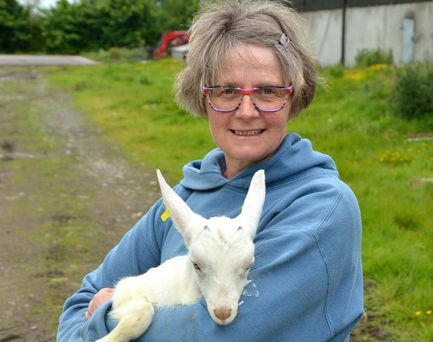 Claudia Marl and her husband Juergen run a herd of 350 goats at their farm near Collinstown