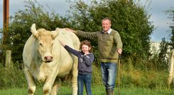 Christy Comerford and his daughter Cynthia on the family's suckler beef farm in Castlewarren, Co Kilkenny. Photo: Roger Jones