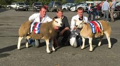 John Green, Cullduff, Co Donegal with the overall Champion of the Show and Anthony Donnelly, Ballyglass, Scardaune, Claremorris with the Reserve Male Champion and (centre) show judge, John Mellin from Hullhouse Texels U.K.
