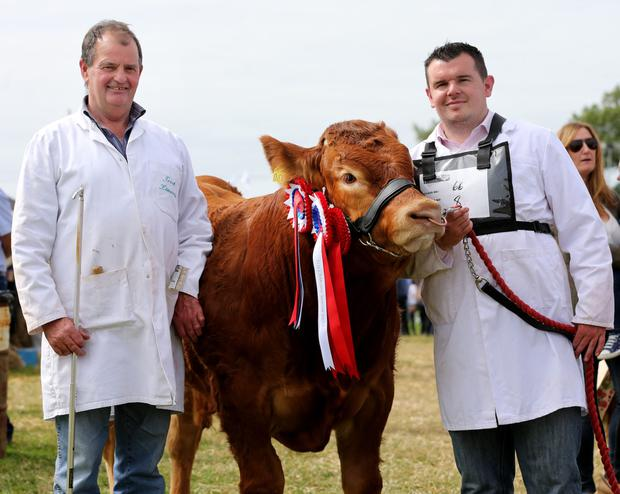 James and Sean O'Grady who won first place in the Limousin junior male competition. Picture; Gerry Mooney