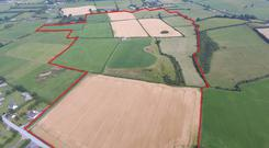 The farm consists of two lots of (top) 119ac and 10.35ac located close to Golden