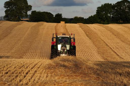 The buoyant trade for straw has been a welcome boost for grain growers