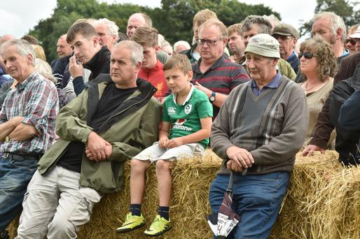 People were taking a chance to rest their feet at the event on the Murphy's farm near Ferns, Co Wexford