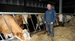 Michael Gubbins from Crockhill, Buncrana lost 162 silage bales to the floods and has been forced to house his stock. Photo: Caroline Quinn