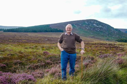 Sean Malone on his sheep farm at Roundwood, Co Wicklow. Photo: Siobhan English