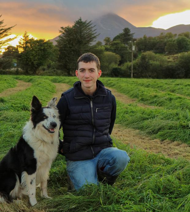 Brian Joyce and his dog on the farm in Mayo