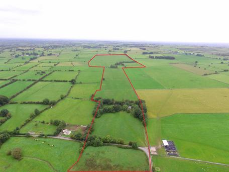 The 65ac holding is located near Knockcroghery and 10kms from Roscommon town