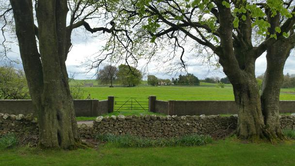 This 120ac residential farm at Moylough in Co Galway made €1.305m when bought by a group of local farmers in June