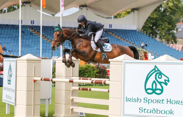 BP First Editions, a daughter of Ballypatrick Flight, was crowned five-year-old champion at the RDS in August